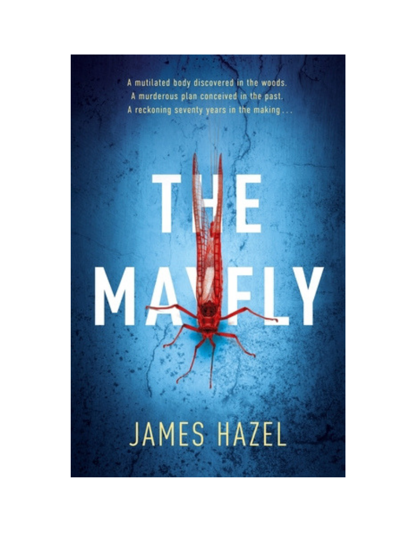 The Mayfly by James Hazel
